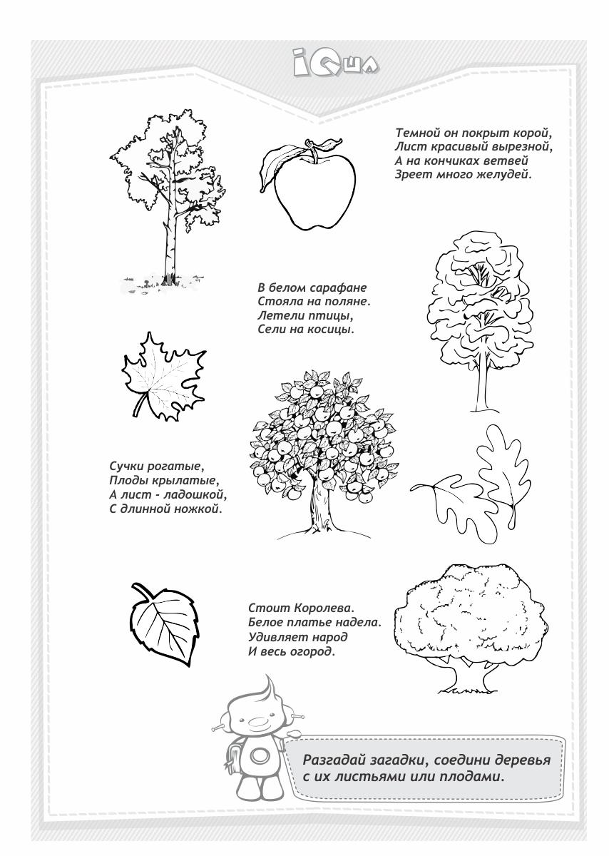 детям о деревьях
